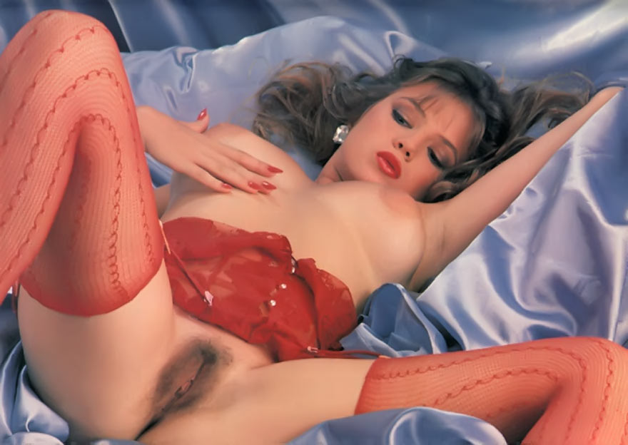 Traci Lords little minx, queen of adult films.: pornoxxbox.com/gallery/Stacy-Lords